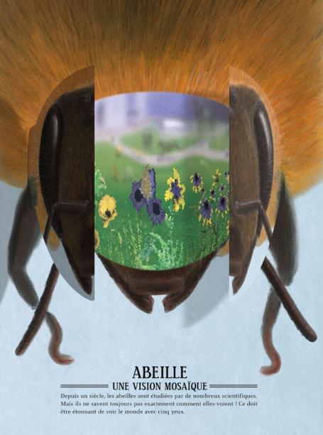 zooptique abeille2