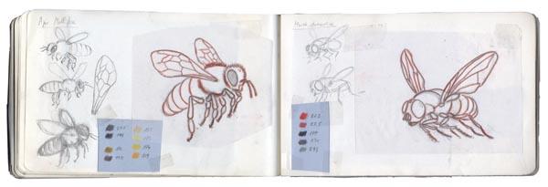 zooptique carnet abeille mouche